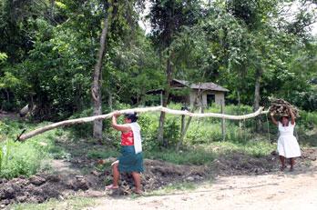La comunidad del El Tajín sin servicios básicos (Foto: especial)