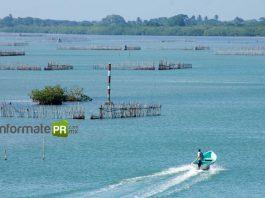 Contaminación en la laguna de Tamiahua (Foto: Jorge Huerta E.)